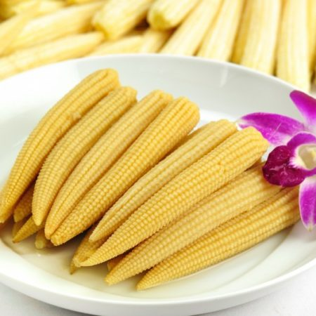 Canned Baby Corn SAFIMEX export vietnam vegetables foods