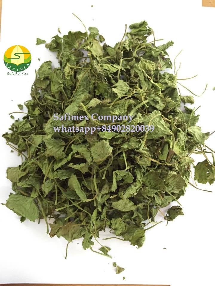 Dried Centella Asiatica Leaves HERBS vietnam safimex