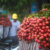 Bac Giang Earns 5.4 Trillion VND From Lychees | SAFIMEX