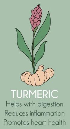 Turmeric Herbs Export SAFIMEX