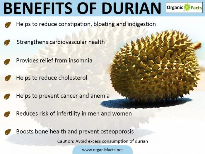 Top 8 Benefits of Durian fruit SAFIMEX