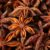 Aniseed (Anise) – Naturally Equine