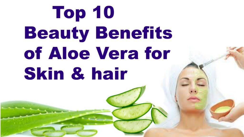 The Benefits Of Using Aloe Vera For Skin Care  SAFIMEX beauty