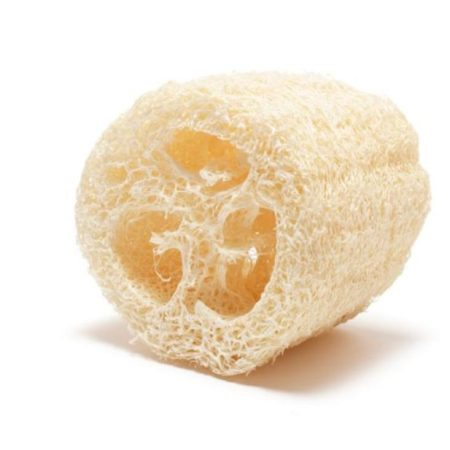 Dried Loofah luffa