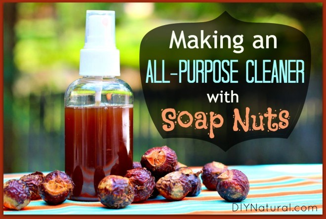7 Beauty Benefits of Soap Nuts