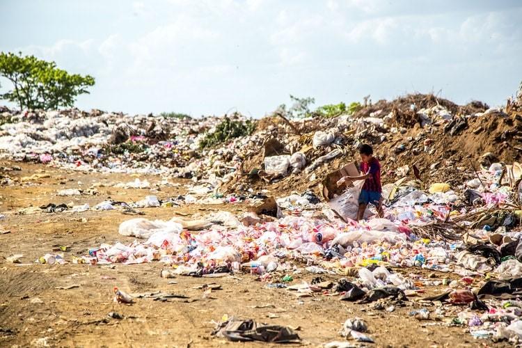 Human impact Plastic pollution