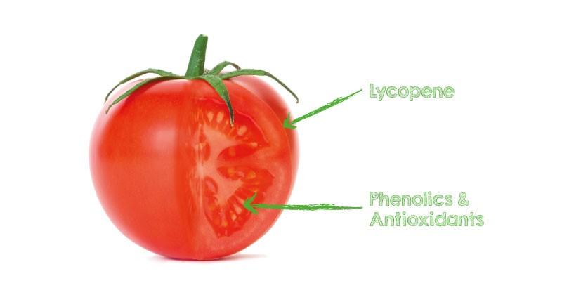 Safimex Tomato 01