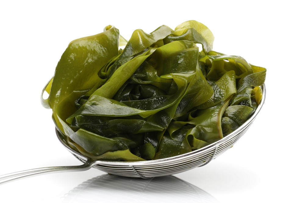Seaweeds SAFIMEX