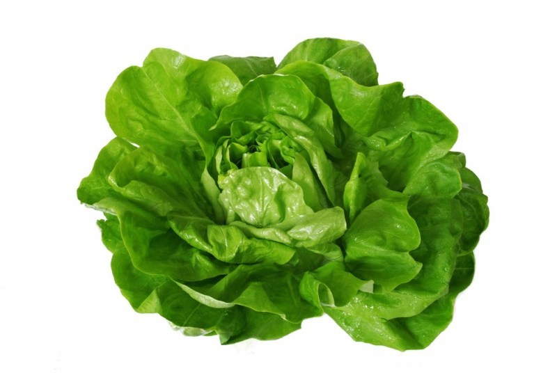 11 Healthiest Leafy Greens You Should Be Eating boston lettuce vegetable