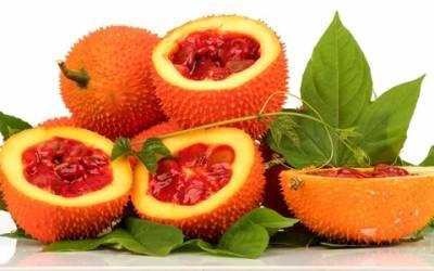 How to Grow Gac – The Secret Super Food
