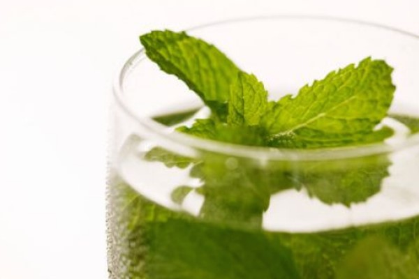 Fresh Mint Leaves detox water