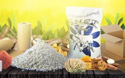 Applications of Tapioca Starch As A Composite Raw Material in Industries