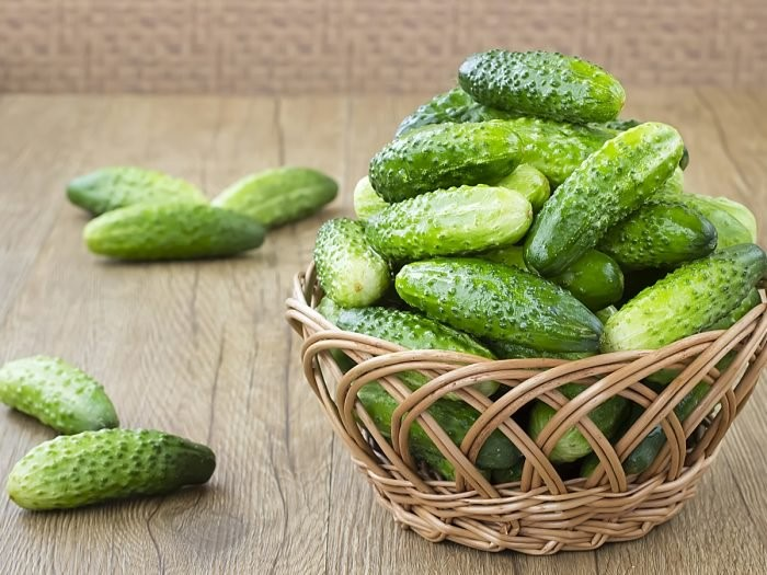How To Store Cucumber For A Longer Life | SAFIMEX