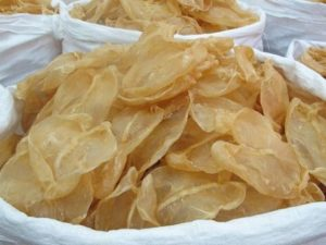 cat Fish maw Foods