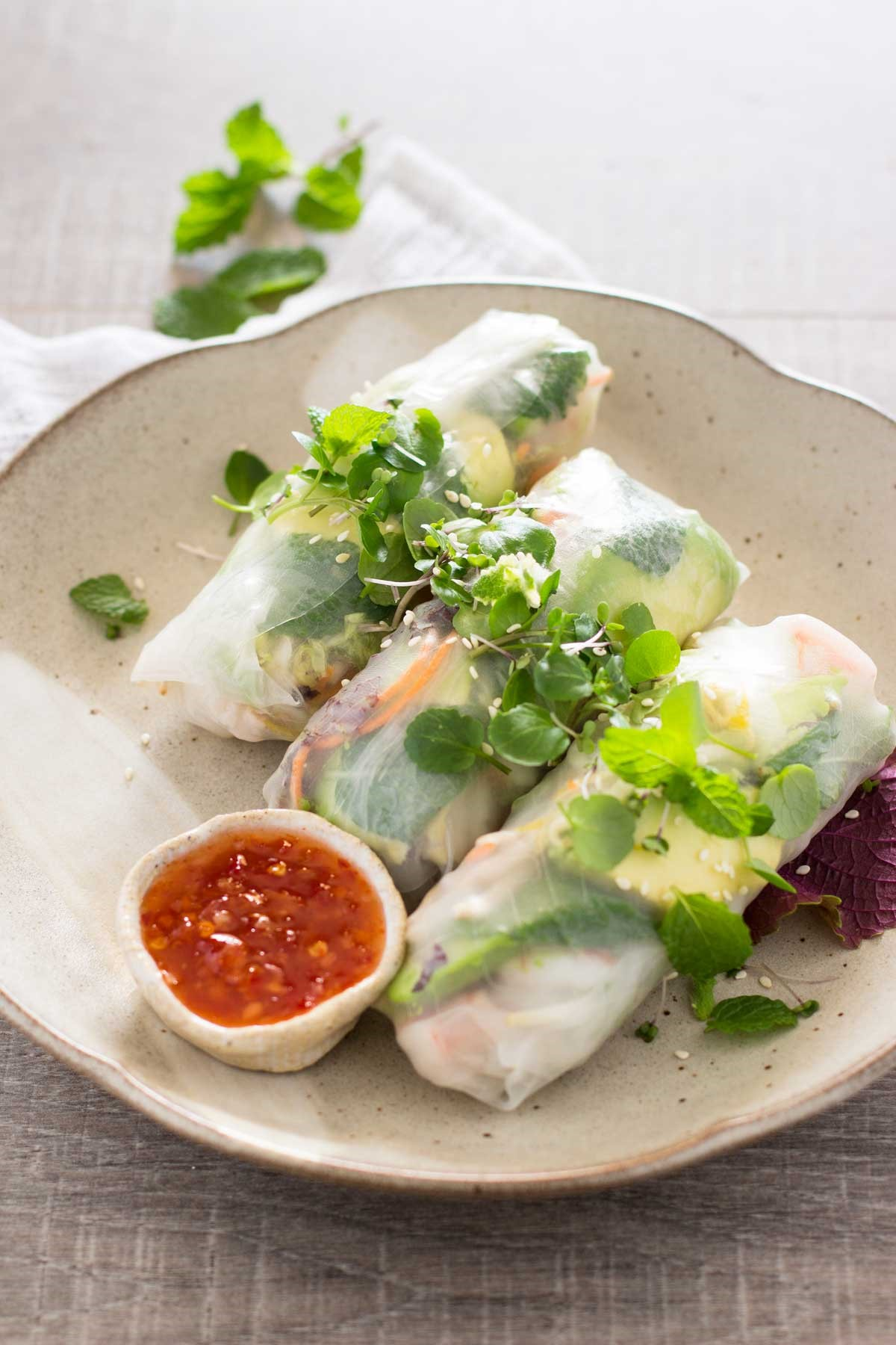 Japanese Rice Paper Rolls 2