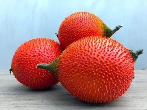 GAC FRUIT SAFIMEX