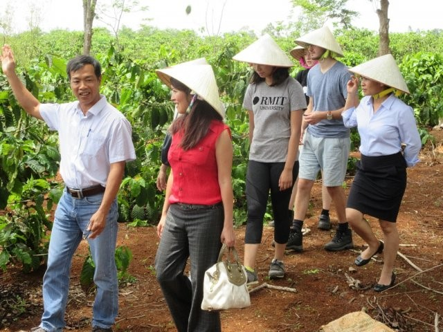 Vietnamese Gac fruit proving to have substantial health benefits