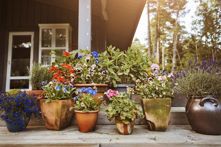 Group lots of pots together  How to declutter your garden in 5 easy stepsto make the mish-mash pots look purposeful.