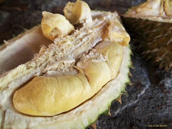 durian vietnamese fruit