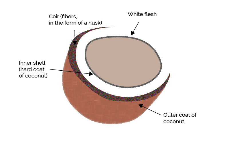Coconut Coir - What It Is